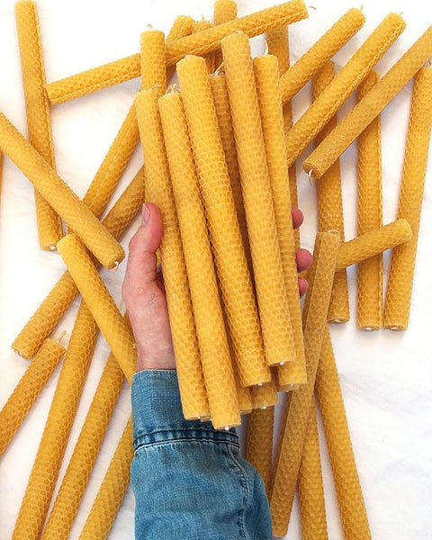 Apis Cera Lucienne Beeswax Candles