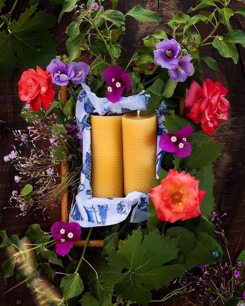 Apis Cera Ambroise Beeswax Candles