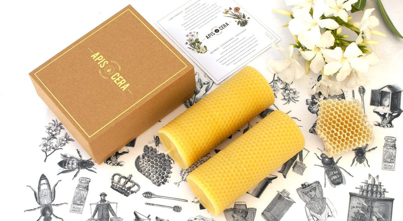 Apis Cera Candle Ambroise Beeswax Pillar Candles