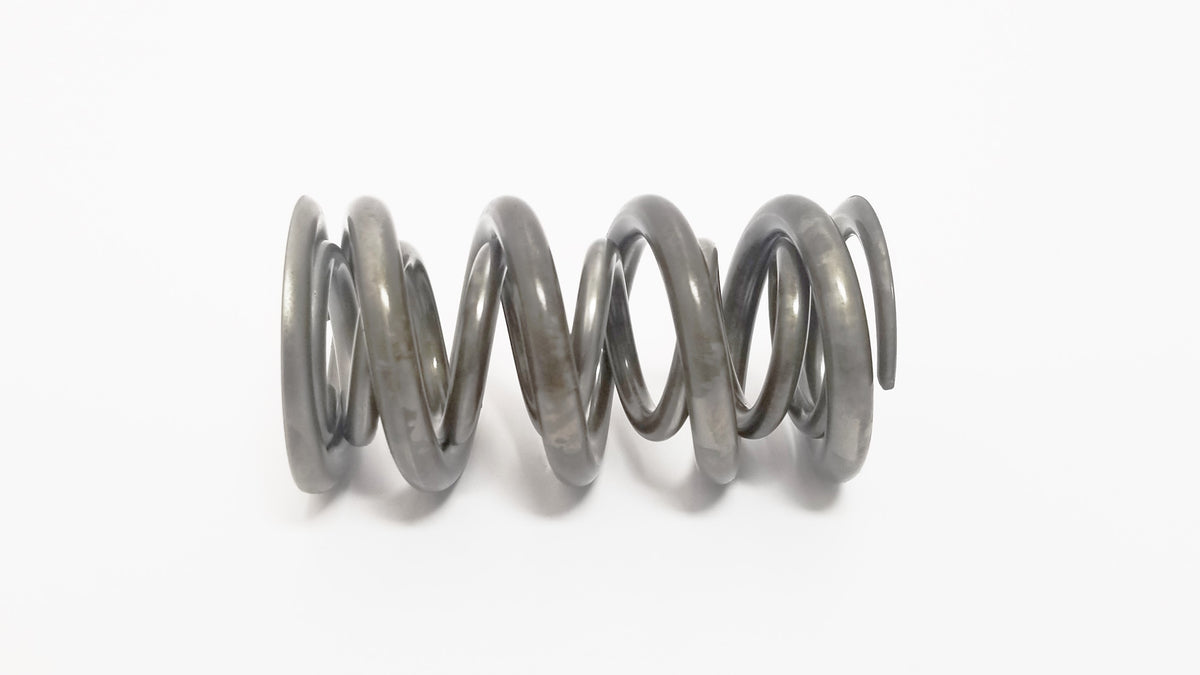 Used Valve Spring (set of 8)