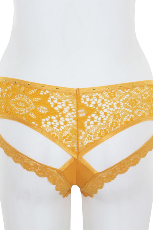 Cut Out Lace Back Hipster - J NILLY