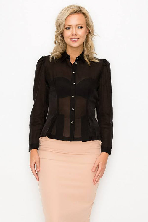 Organza Pleated Long Sleeve Blouse - J NILLY
