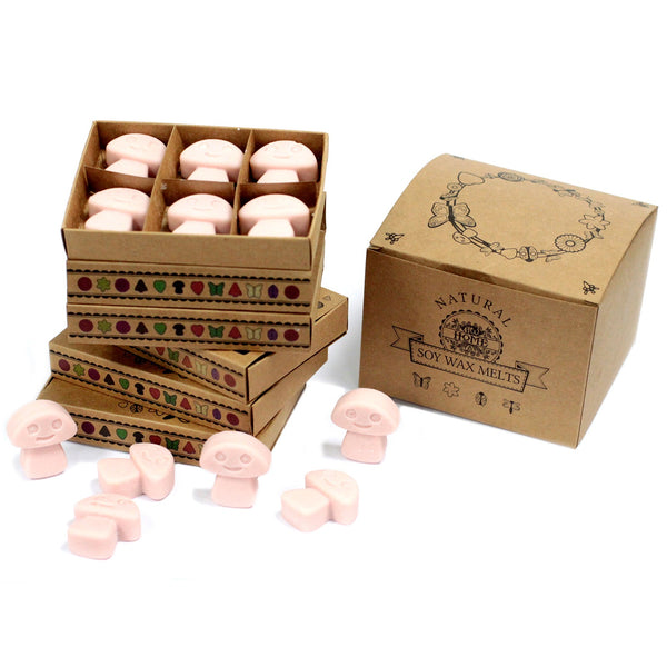 Box of 6  Wax Melts - Old Ginger - Aromatherapy