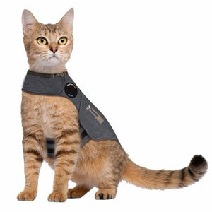 ThunderShirt pour chat