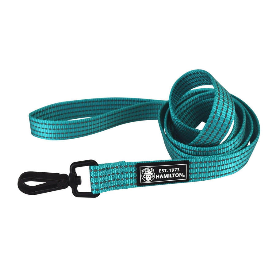 "Laisse HIGH VISIBILITY turquoise 1"" X 6'"