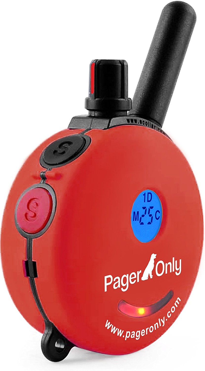 pager only pg-300