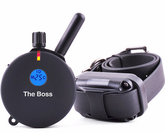 the boss et-800 e-collar