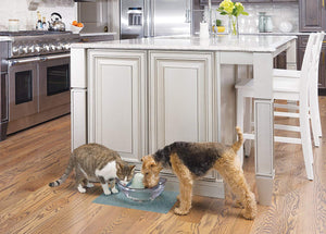 Fontaine pour chat et chien Drinkwell Sedona