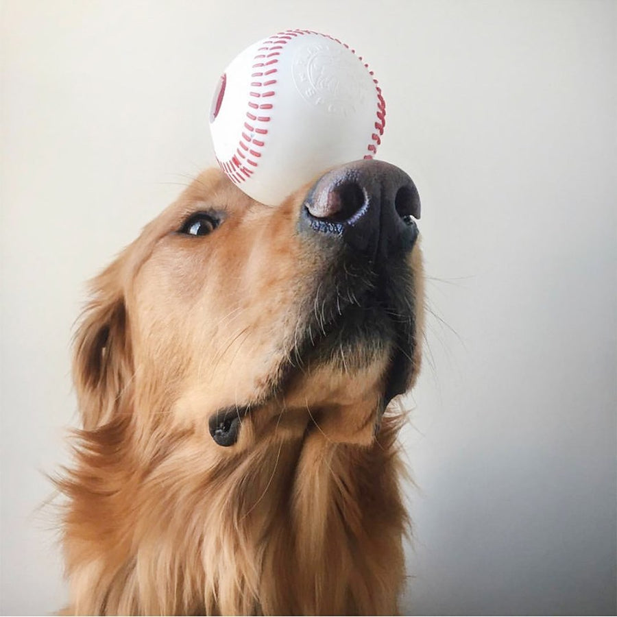 Balle de baseball Planet Dog Orbee Tuff