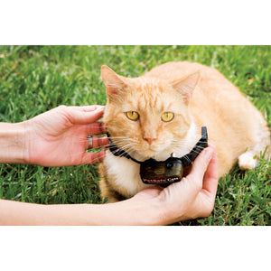 collier anti fugue chat