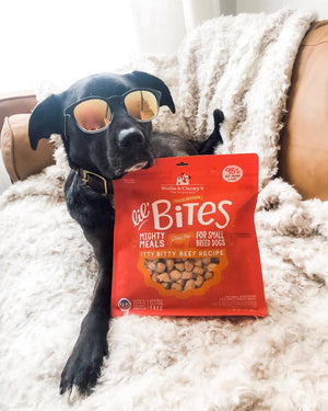 Stella & Chewy's Itty Bitty Beef Lil' Bites pour petits chiens
