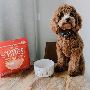 Stella & Chewy's Chicken Little Lil' Bites pour petits chiens