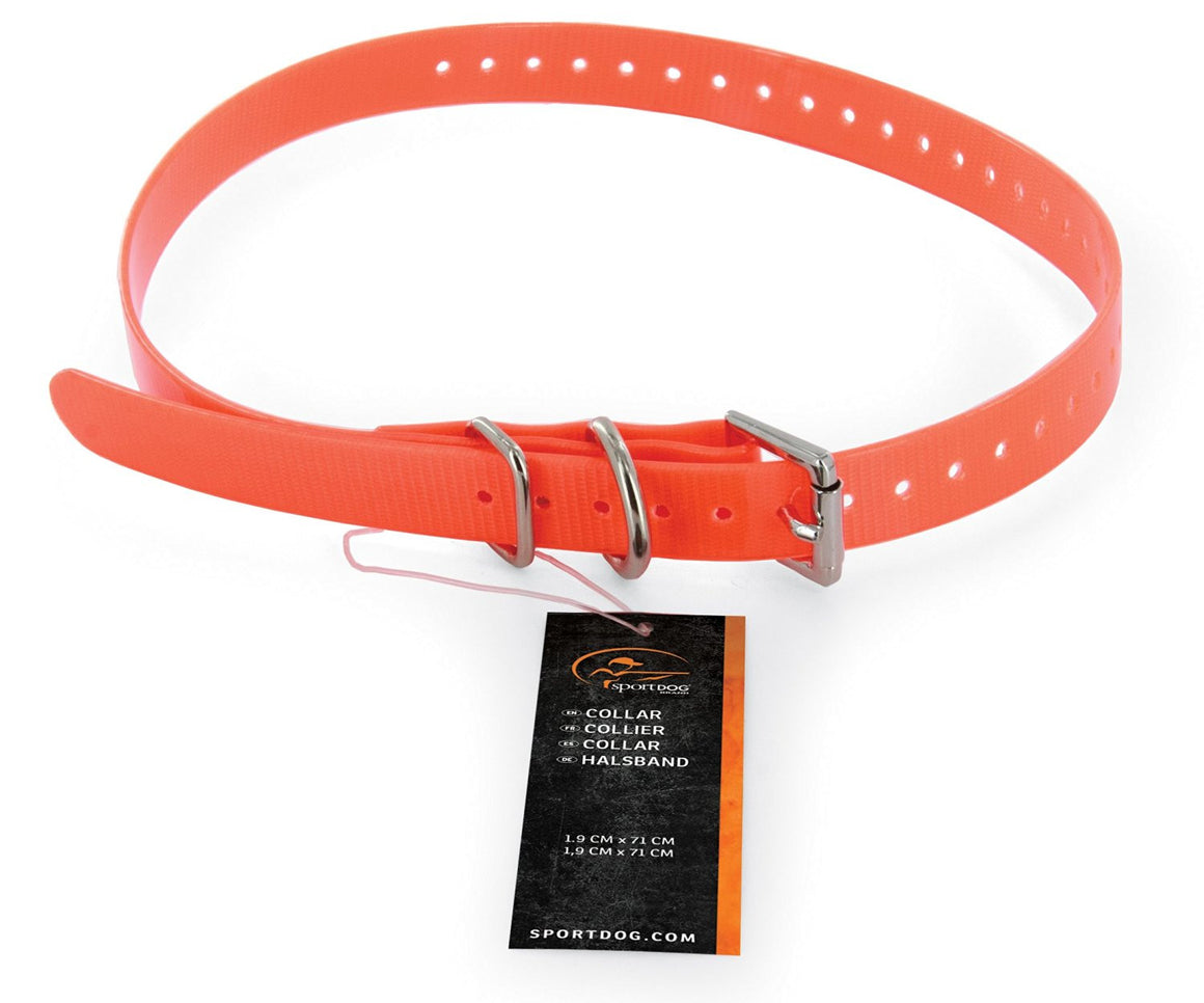 collier sportdog 3/4'' orange