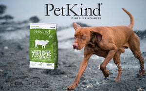 Nourriture pour chien PetKind Green Beef Tripe