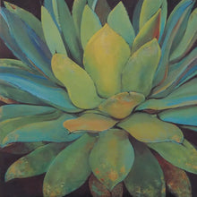 Load image into Gallery viewer, Single Succulent
