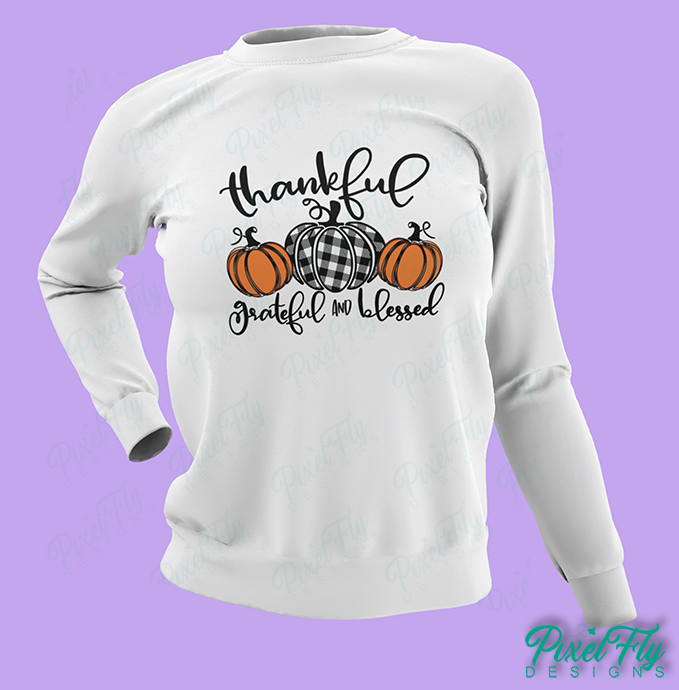 Sweatshirt - Thankful, Grateful and Blessed, in color white, size small
