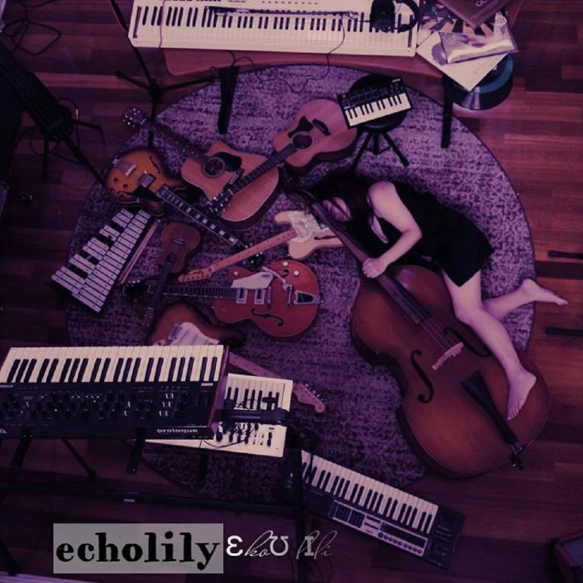 An Interview with echolily