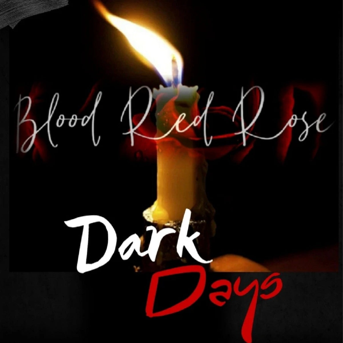 Blood Red Rose – 'Dark Days'