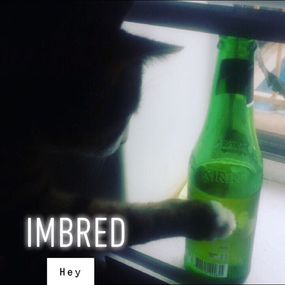 Imbred – 'Hey'