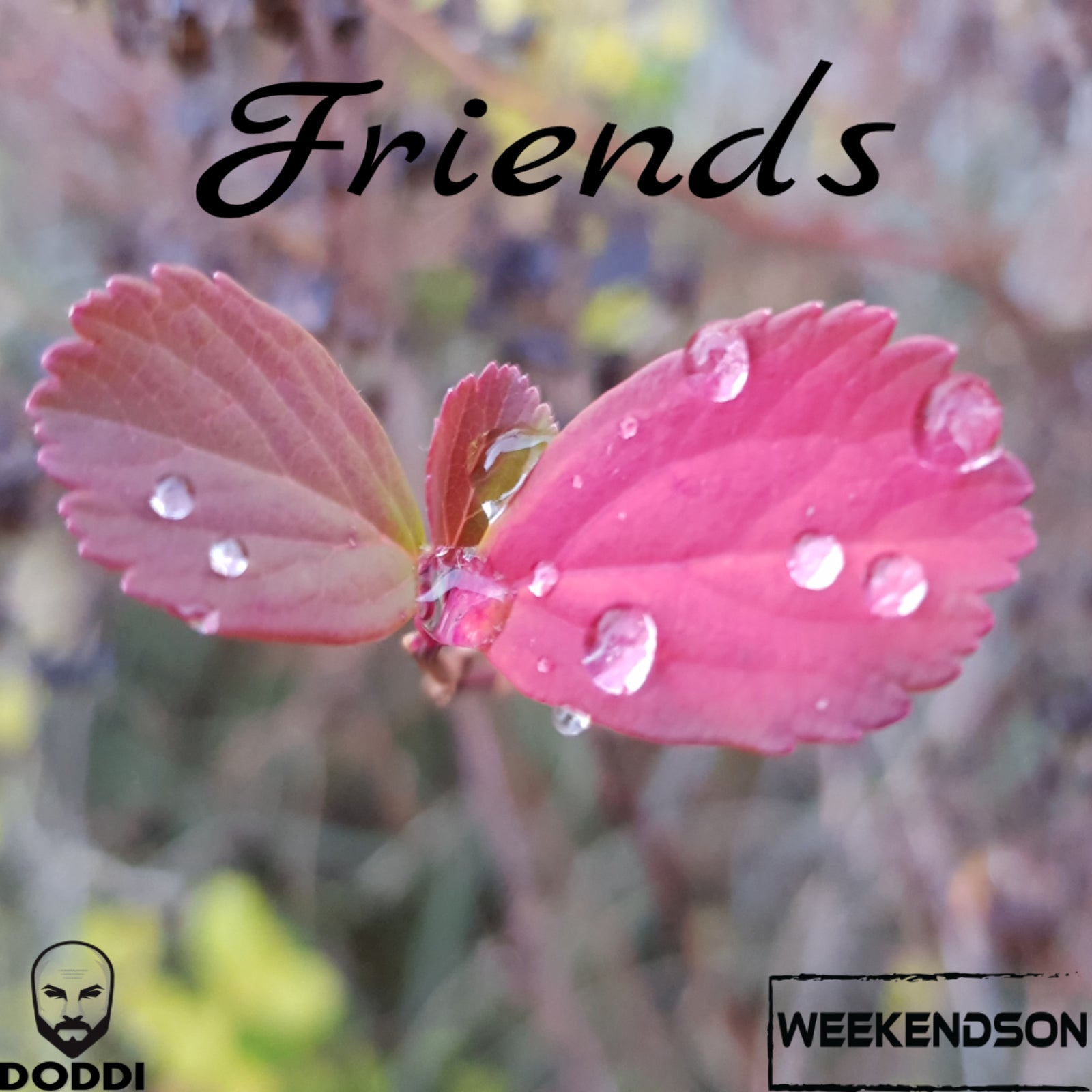 Weekendson & Doddi – 'Friends'