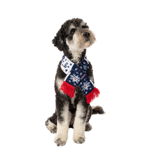 Miller Lite Holiday Sweater Scarf on Cute Dog