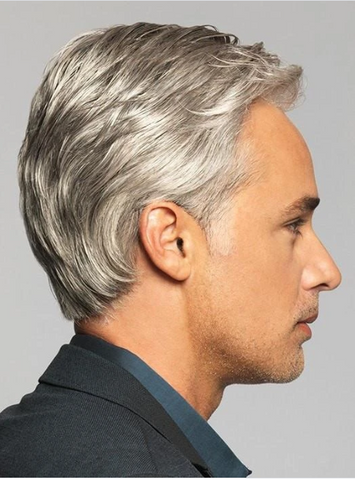 Image of Men's Wig  (grey-2)