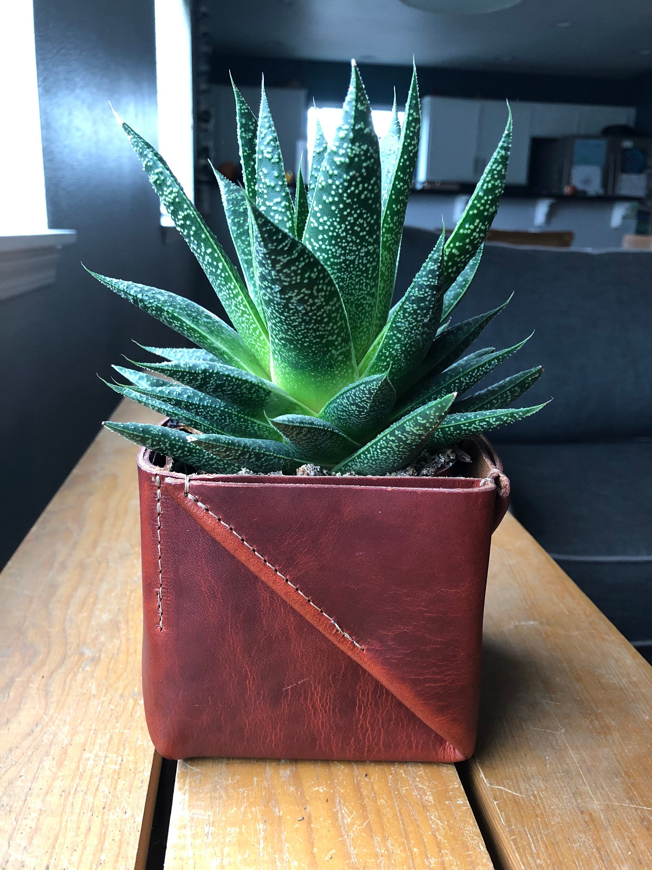 Folded leather planter holds plant in modern home scene