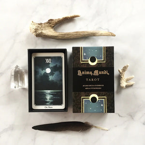 Anima Mundi Tarot Deck 78 Card Deck with Guide Book