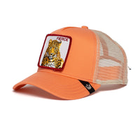 Goorin Bros Hat Fierce Tiger Pink Free Size