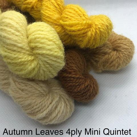Charlie Buttons Yarn - Natural Dyed Minis Quintet - 4Ply