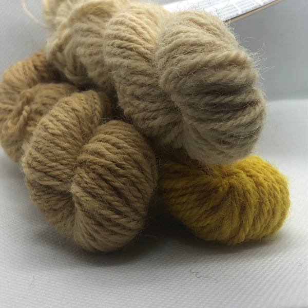 Charlie Buttons Yarns - Natural Dyed Minis Trio - DK