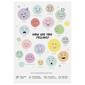 Emotions Poster Wall Decal Broome Education
