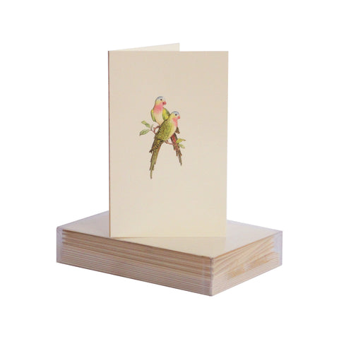 Parrots Boxed Mini Note