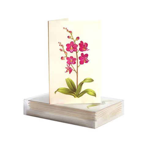 Orchid Boxed Mini Note