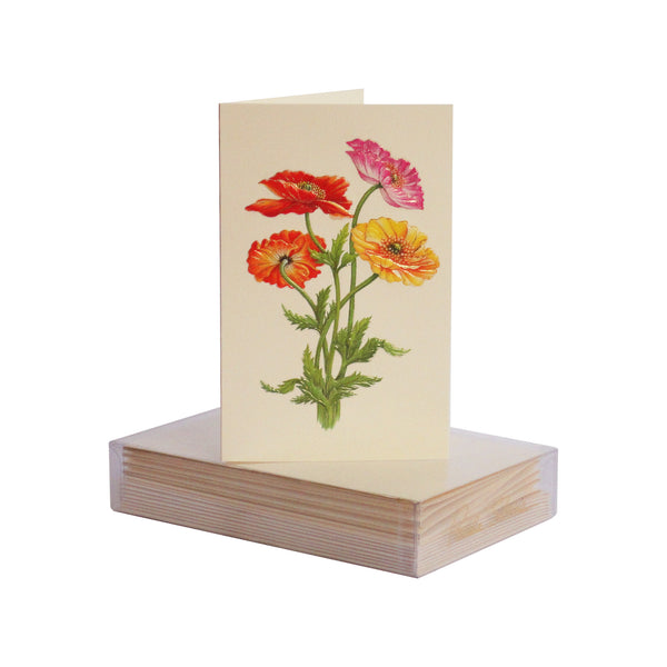 Colorful Poppies Boxed Mini Note