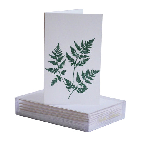Fern Boxed Mini Note