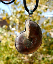 Load image into Gallery viewer, Ammonite Necklace