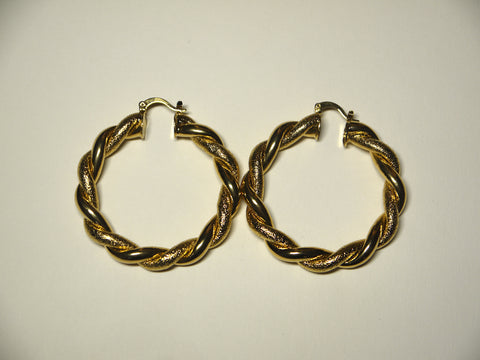 Twisted Matte and Shiny Hoops