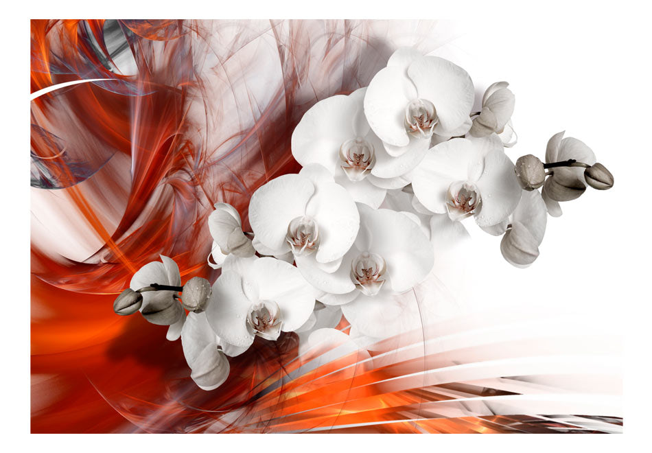 Fototapet - Orchid on fire II