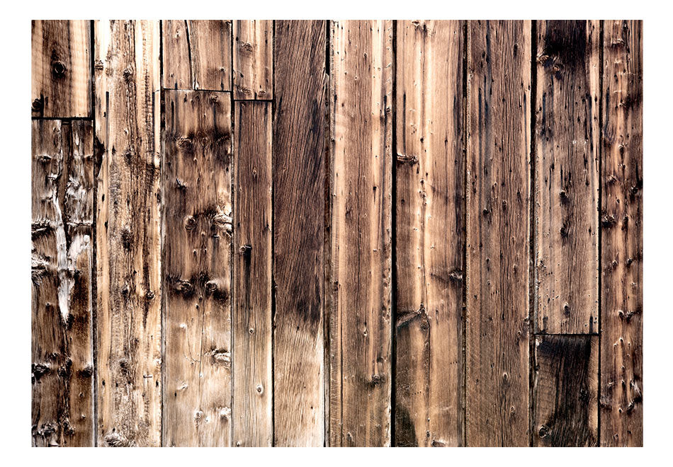 Fototapet - Poetry Of Wood