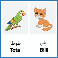 Animals in Urdu book for children. Parrot and cat