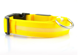 Safety dog LED collar