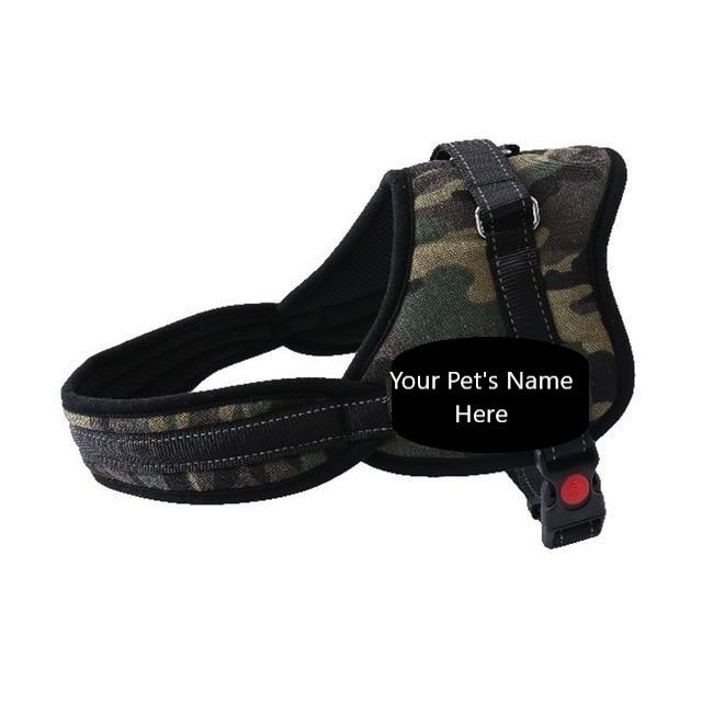 Funky dog harness with customised name - PetSnooze.co.uk