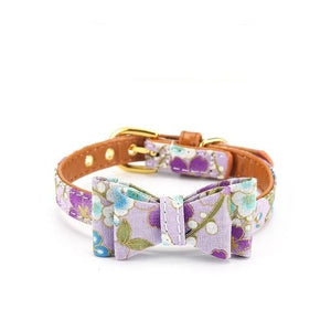 Attractive cat or small dog collars