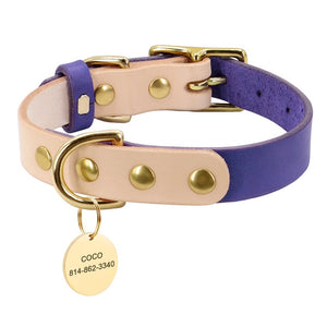 Classy leather collar with tag