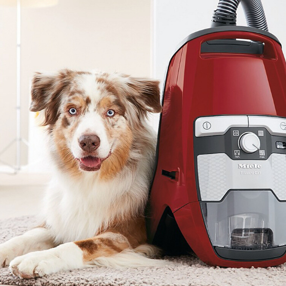 Best Canister Vacuum Cleaners For Pet Hair in 2020.
