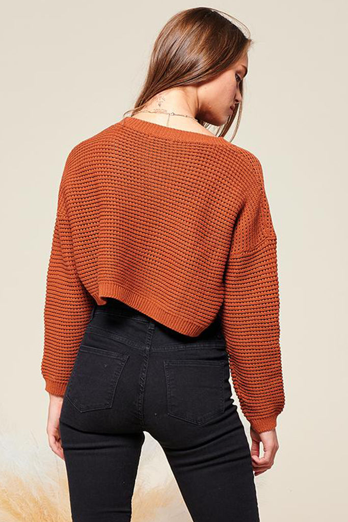 Back side of a brick cropped fishnet knitted sweater top.