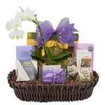 Mother's Day Gift Basket- Orchid for my Mom
