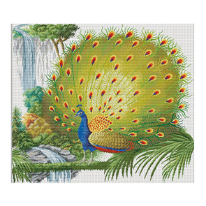 Peacock Illustration - 11CT Stamped Cross Stitch - 83x75cm