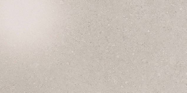 Kone Silver 300x600mm Polished Finish Floor Tile (1.26m2 box)